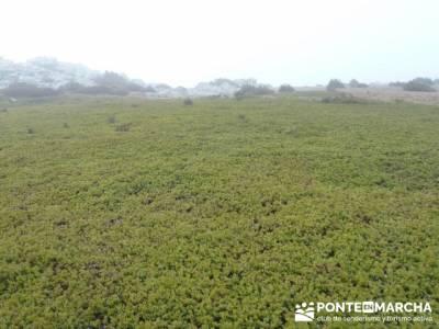 Senderismo Sierra Alto Rey;rutas por asturias;senderismo canarias;senderismo en murcia;fin de semana